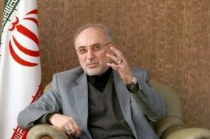 اظهارات صالحی در ترکیه پیرامون ترکیب زبانی ایران چه «سندیتی» دارد؟