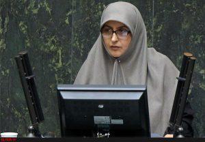 انتقاد نماینده تهران از قومی سازی انتخاب وزراء